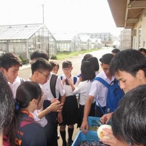 タイ来日16